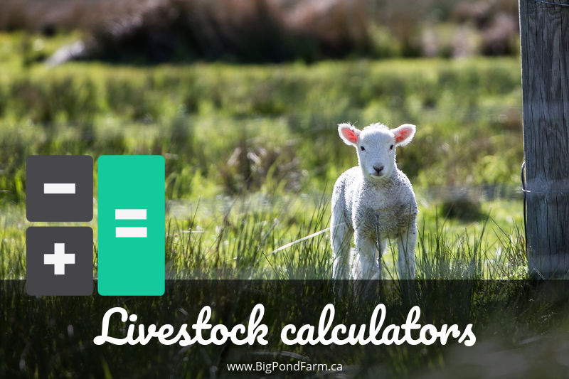 Livestock calculators
